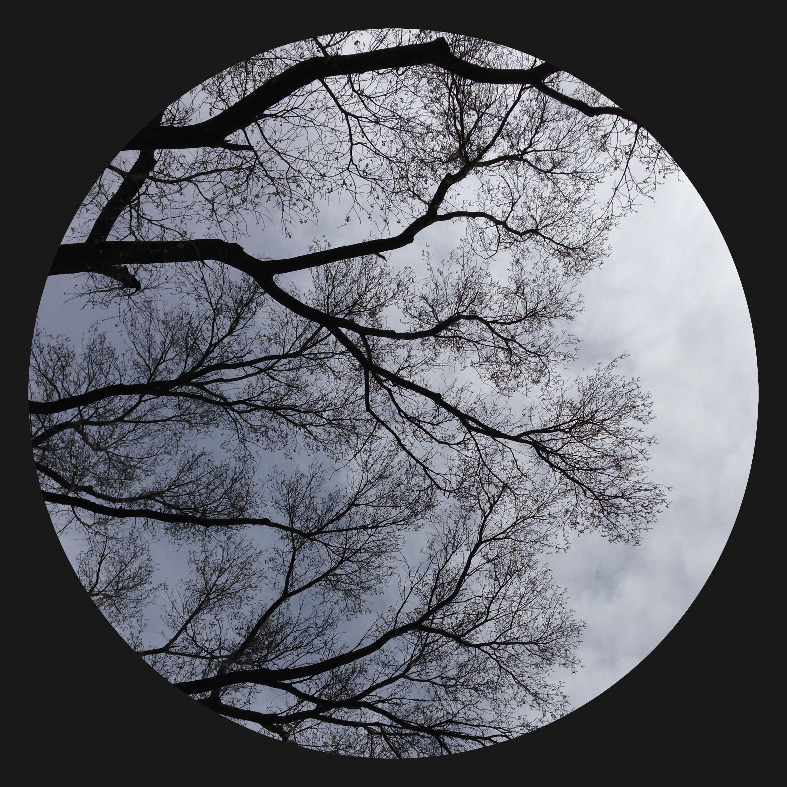 circle1-copy